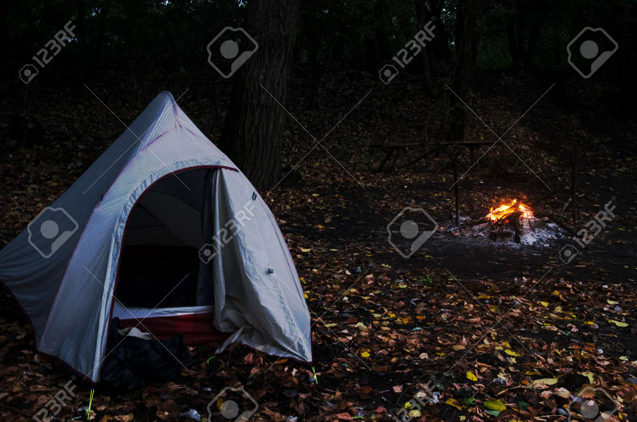 Campfire tent in night forest - 159007494