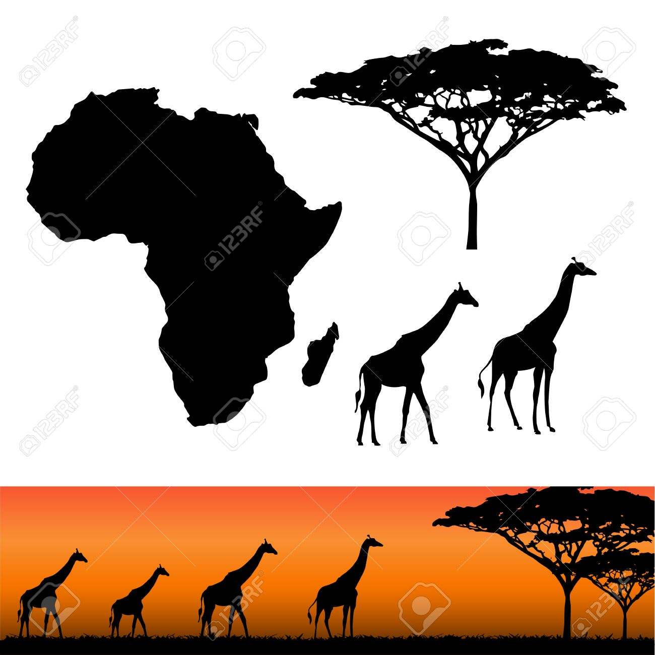 Map of Africa. Africa and Safari elements. African animals, giraffe, vector silhouettes. Panels of african silhouettes with african giraffes. Vector illustration - 54699308