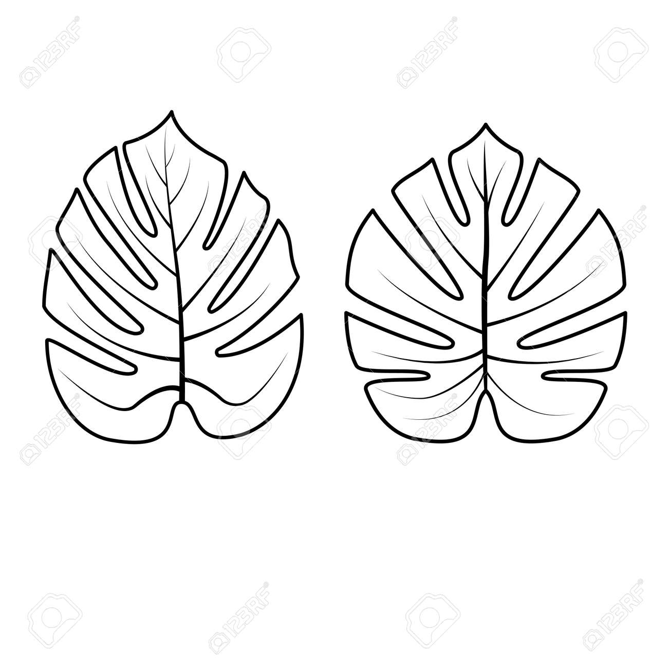 Tropical Palm Leaves Isolated On White Background Outline Vector Royalty Free Cliparts Vectors And Stock Illustration Image 94982953 Sometimes i am overwhelmed of quantity of orders i receive. tropical palm leaves isolated on white background outline vector