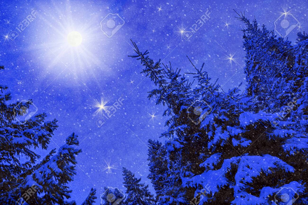 moon winter night landscape in the forest of spruce falling snow. christmas postcard - 134610794