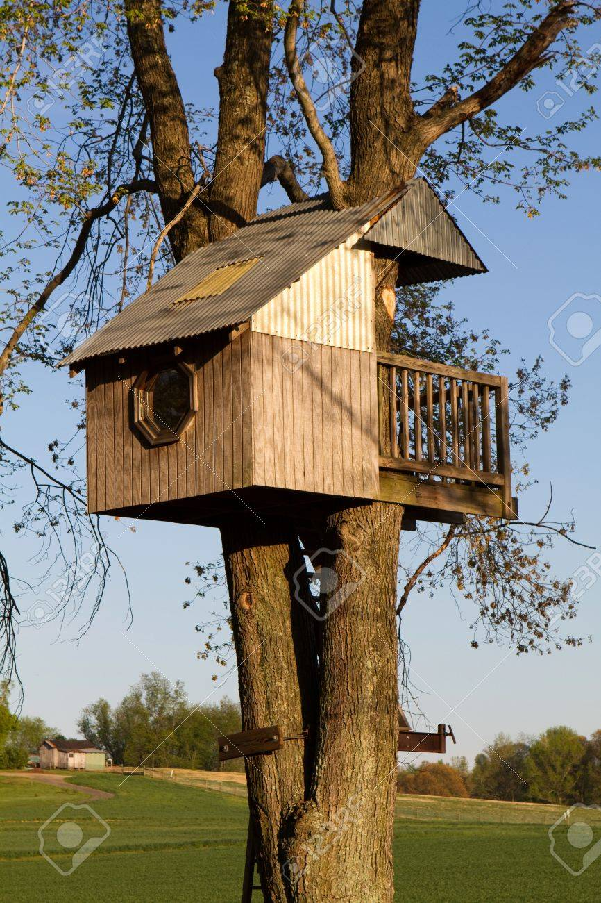 Picture of: Homemade Children S Treehouse Is Built Elevated In A Large Tree Stock Photo Picture And Royalty Free Image Image 9514870