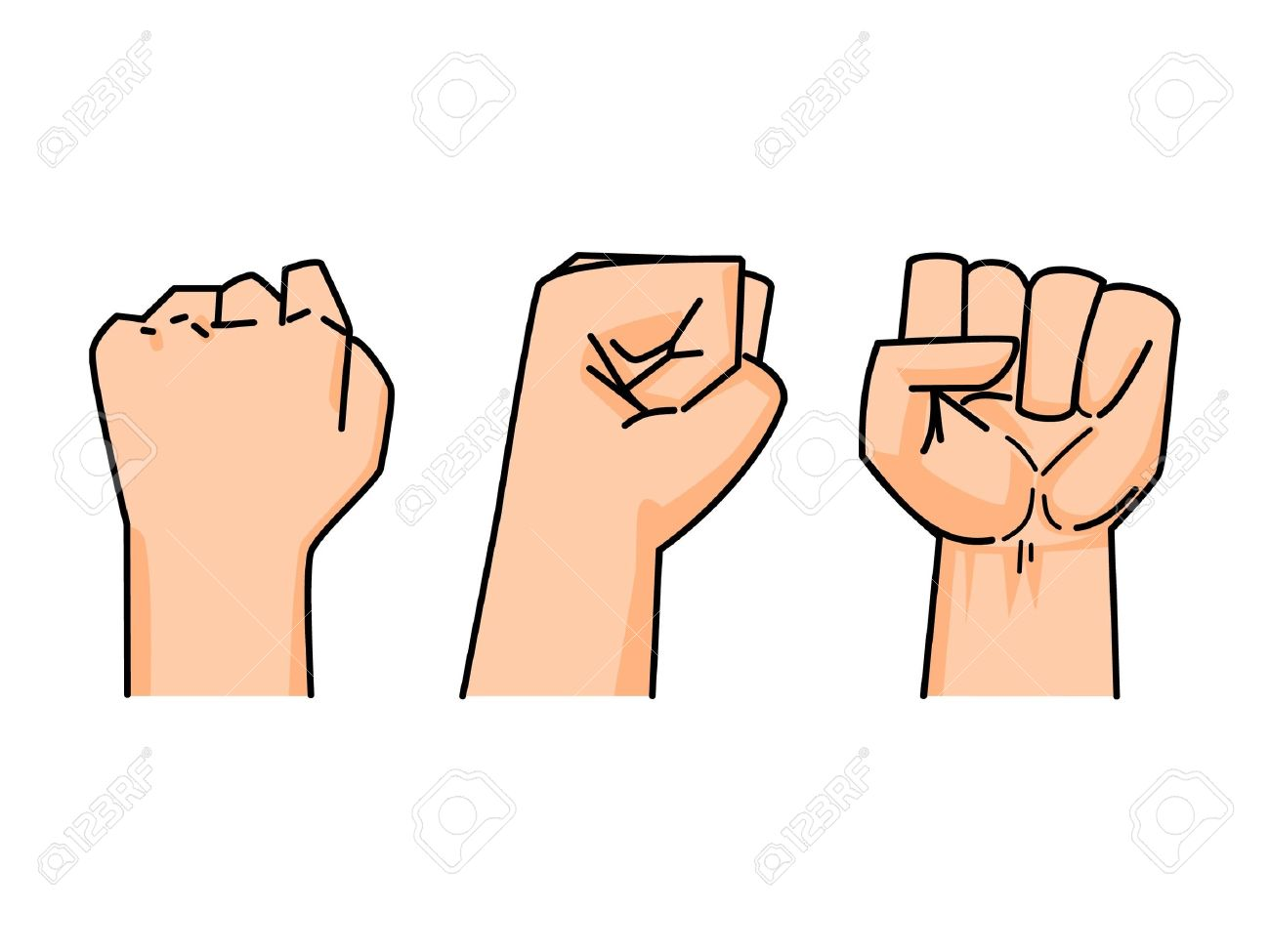 fist of human on white background (back, side, front) Stock Vector - 8154749