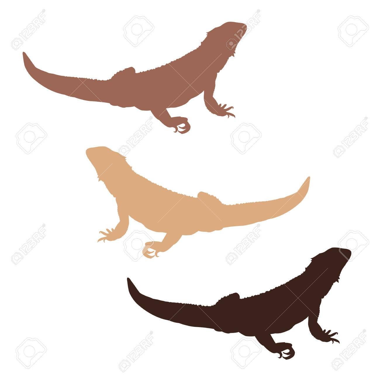 Conjunto De 3 Siluetas De Colores Dragón Barbudo Ilustraciones ...