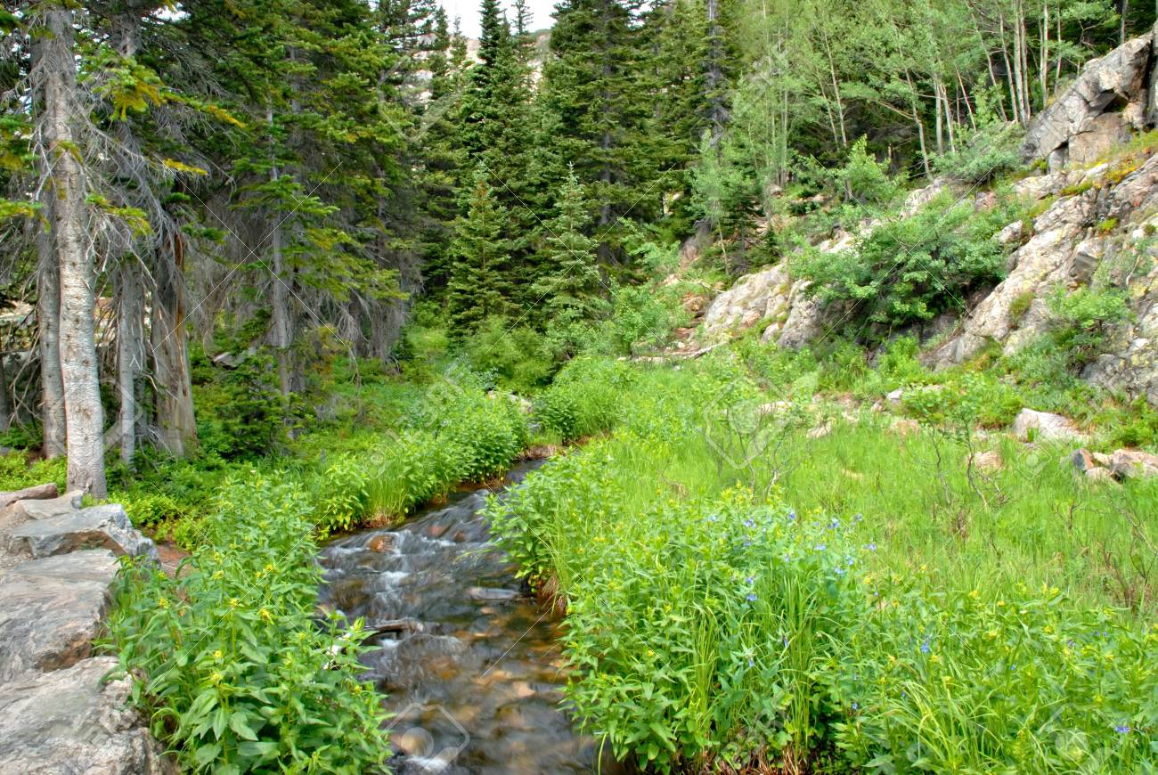 A small stream along the trail to Dream Lake in the Rocky Mountain National Park, Colorado. Stock Photo - 2512555