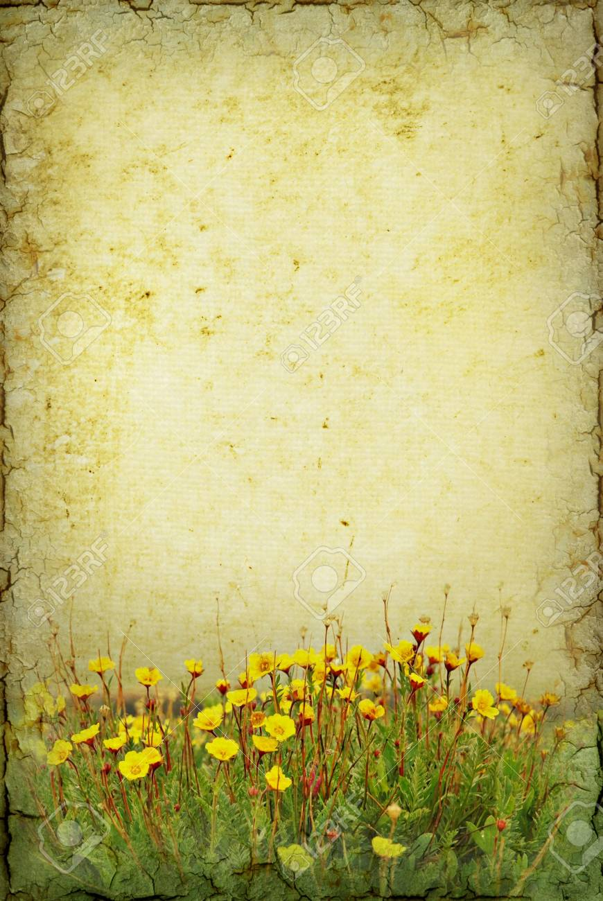 Illustration art of tundra flowers on a grunge background with illustration illustration art of tundra flowers on a grunge background with copy space mightylinksfo