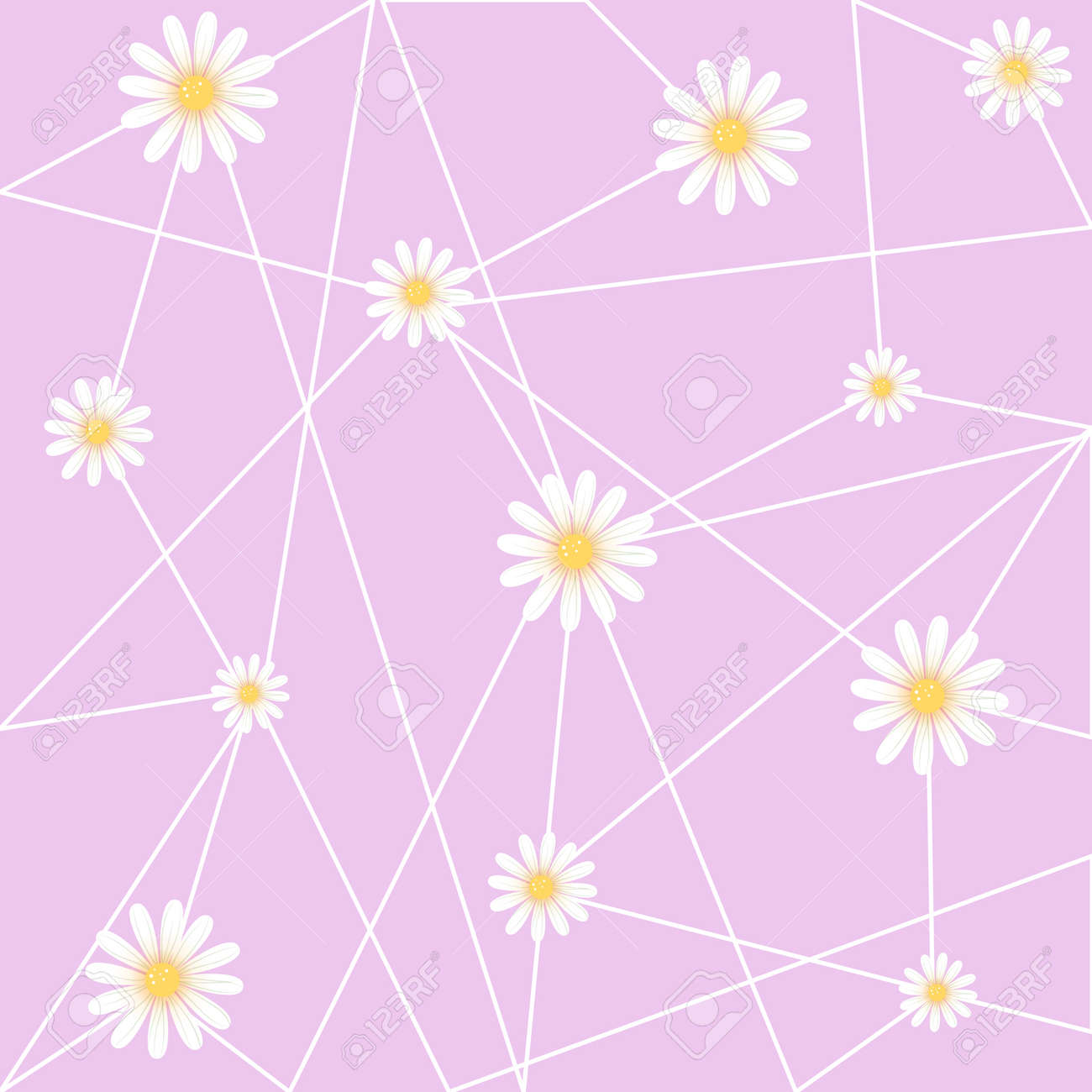 White Flower With Purple Background Pink Abstract Wallpaper Great