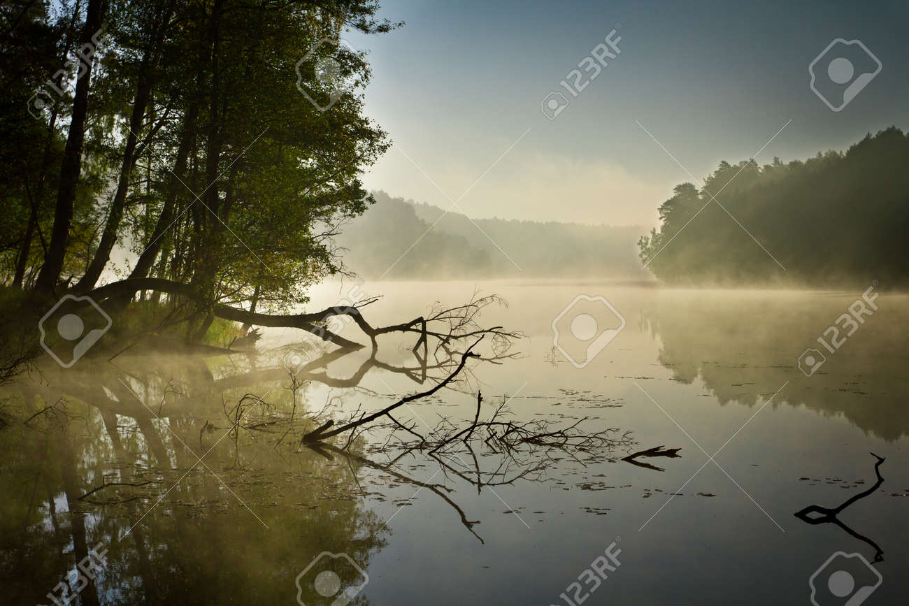 Fog and lake at sunrise in fall Stock Photo - 11021354