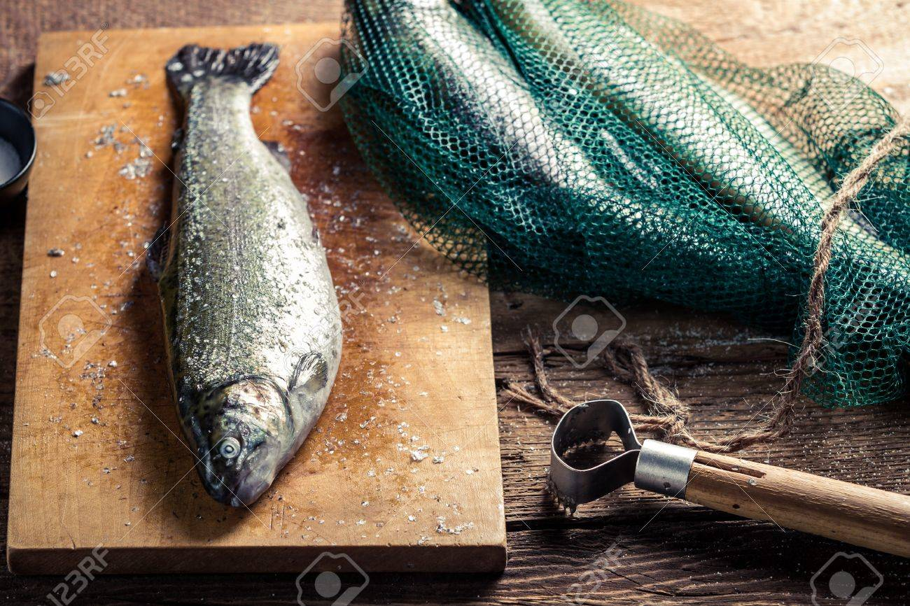 Freshly caught fish in the net for dinner Stock Photo - 18889581