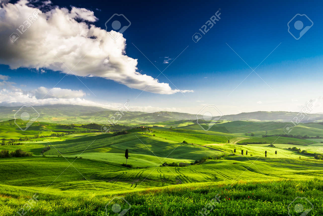 Beautiful view of the green valley at sunset, Tuscany - 20152933