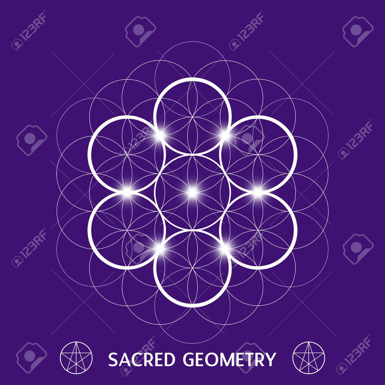 Flower Of Life Symbol Sacred Geometry Vector Illustration Royalty