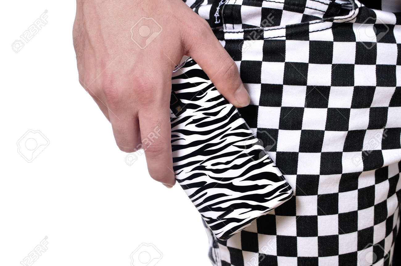 Closeup of zebra pattern cell phone and checkered pattern pants style Stock Photo - 18226178