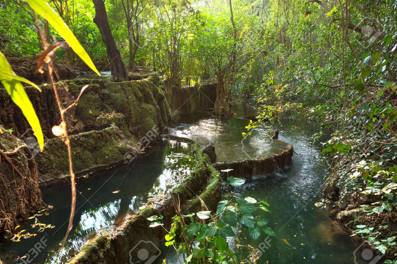 Terrazas De Piscinas Naturales De Agua Dulce En Un Entorno De Selva Exótica En Río La Venta Cañón En Chiapas México