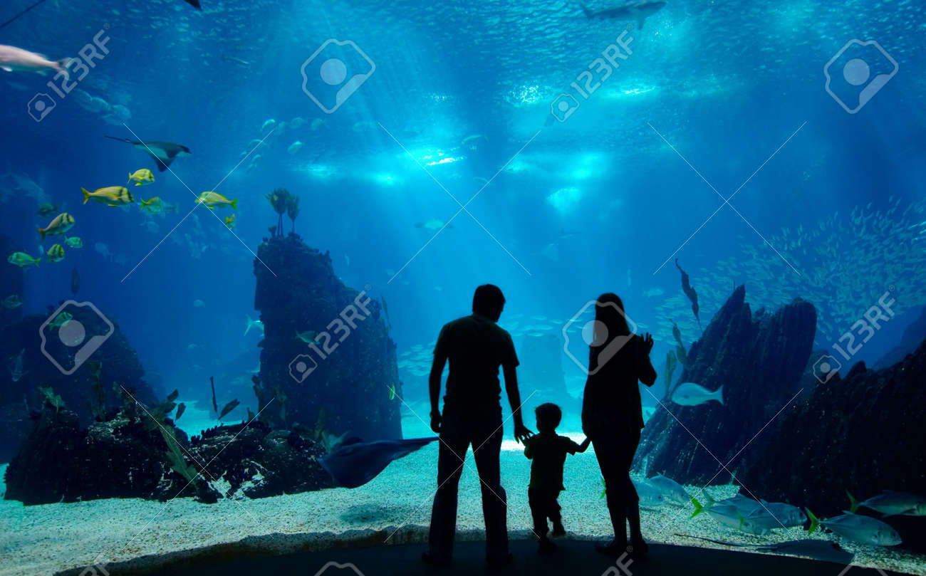 Underwater family. Silhouettes of young family of three enjoying views of underwater life. Family having free time in Oceanarium. Stock Photo - 2150419