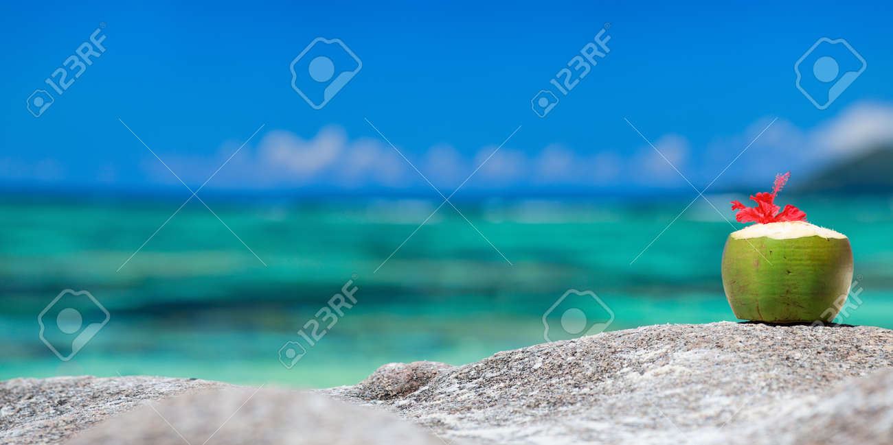 Coconut with tropical flower on exotic coast Stock Photo - 8592824