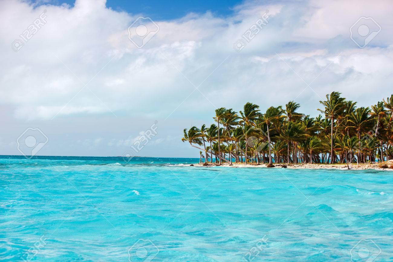 Idyllic tropical island and turquoise ocean water in Bahamas - 49178341