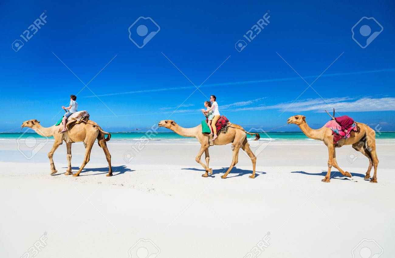 Family mother and kids riding camels at tropical white sand beach - 85170623