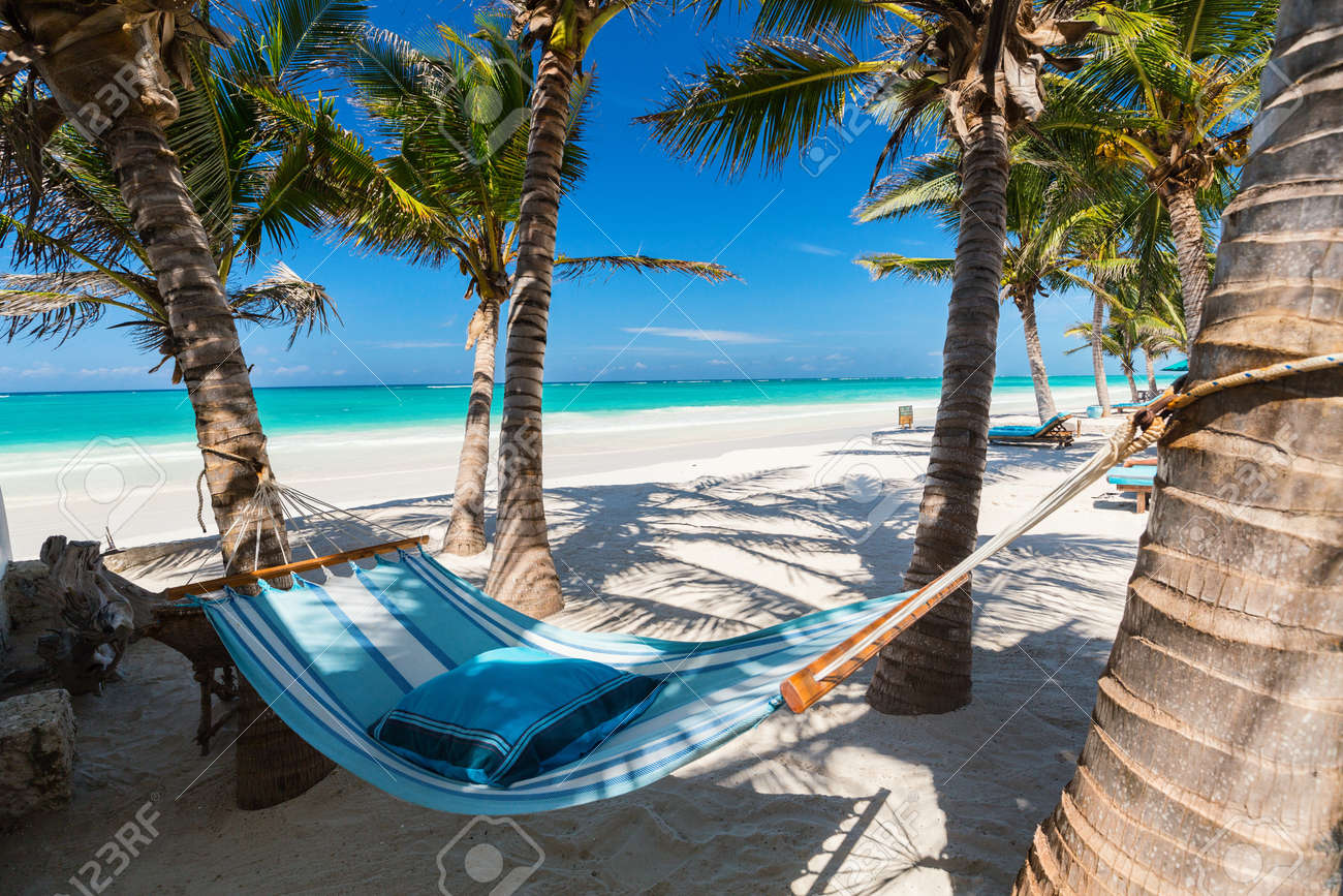 Perfect tropical beach with palm trees and hammock - 90312401