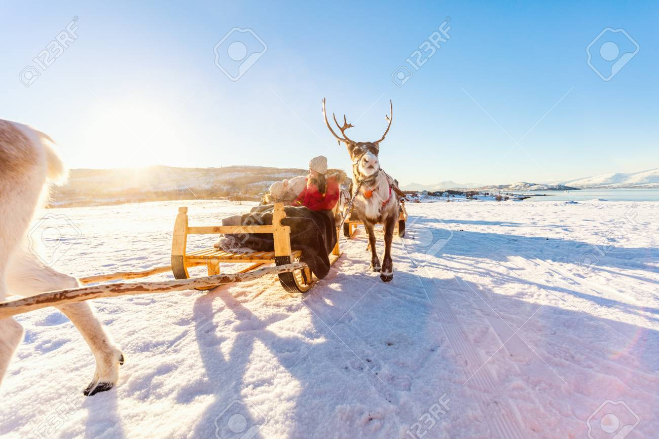 Family of mother and her daughter at reindeer safari on sunny winter day in Northern Norway - 97961946
