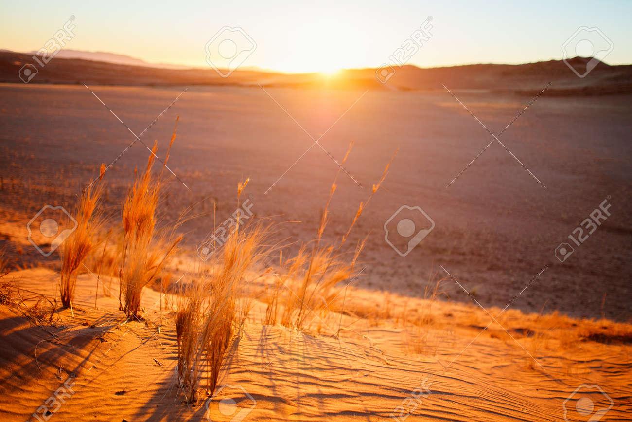 Stunning sunset over red sand dunes in Namib desert - 130798657
