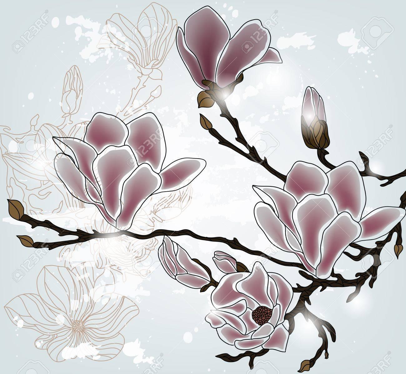 magnolia branch Stock Vector - 12495210