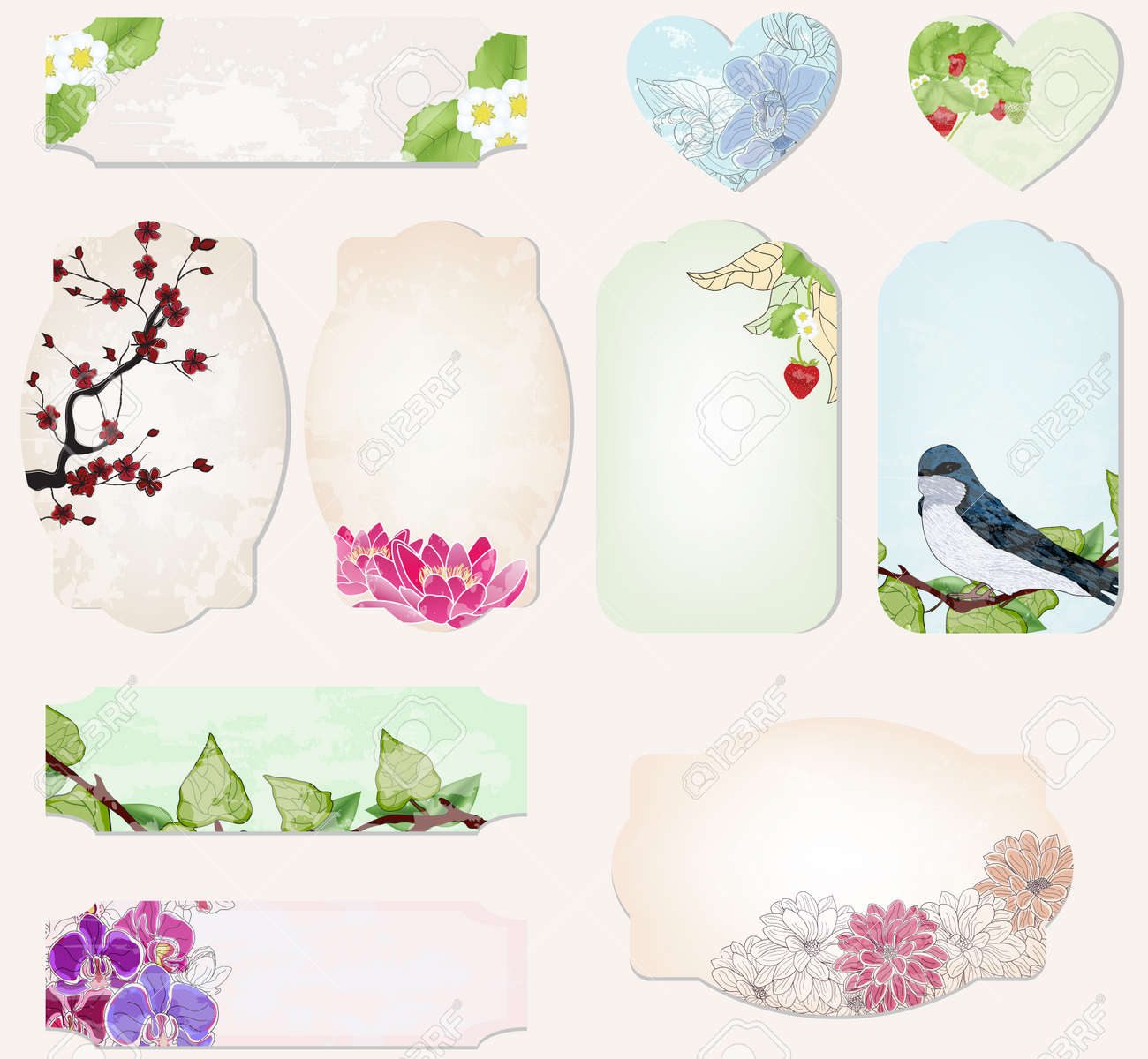 set of precious labels with natural decorations Stock Vector - 13025978