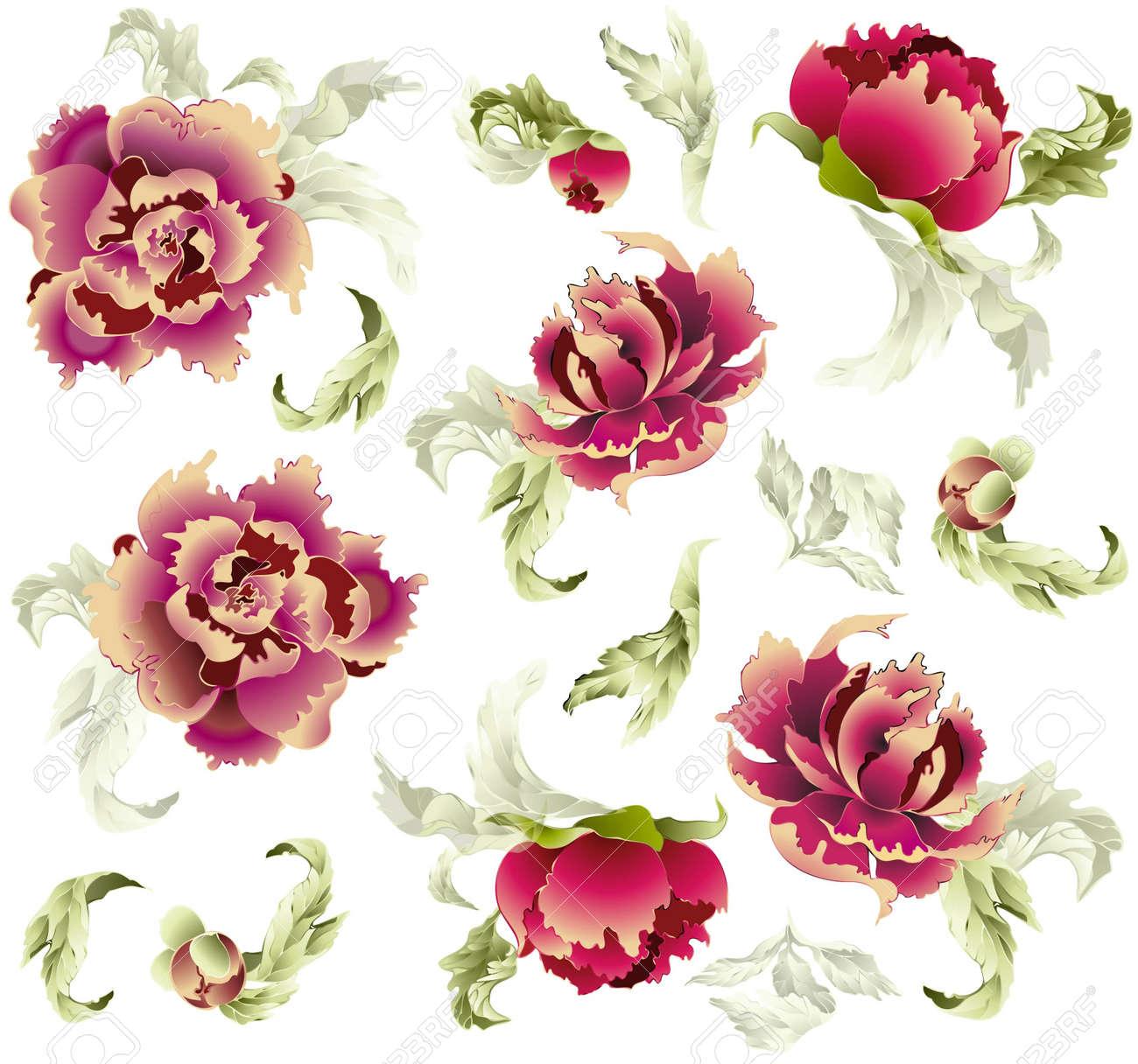 Fondo transparente de un adorno de flores, moda modern wallpaper o textil Foto de archivo