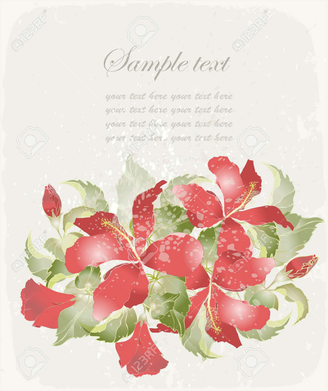 Greeting card with hibiscus. Illustration hibiscus. Stock Vector - 10670364