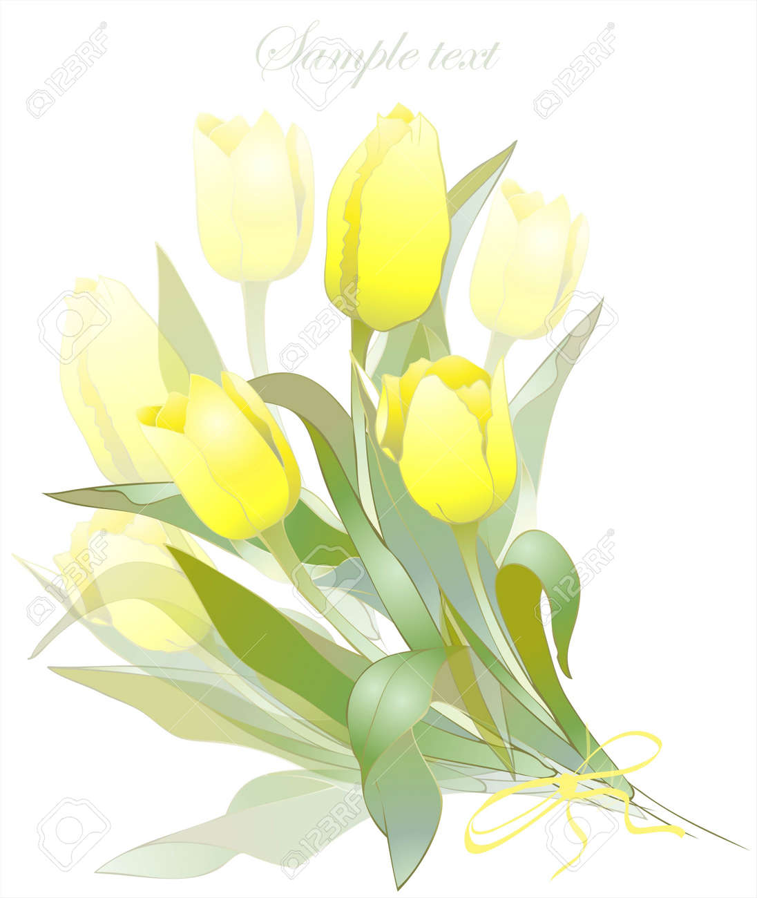 Bouquet of tulips .  Buds and flowers of a tulips.  Spring tulip flowers bunch. Stock Vector - 12918521