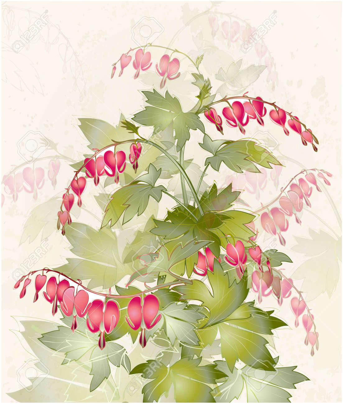 Illustration bleeding heart dicentra spectabilis greeting illustration bleeding heart dicentra spectabilis greeting card with flower colorful fresh spring flower izmirmasajfo