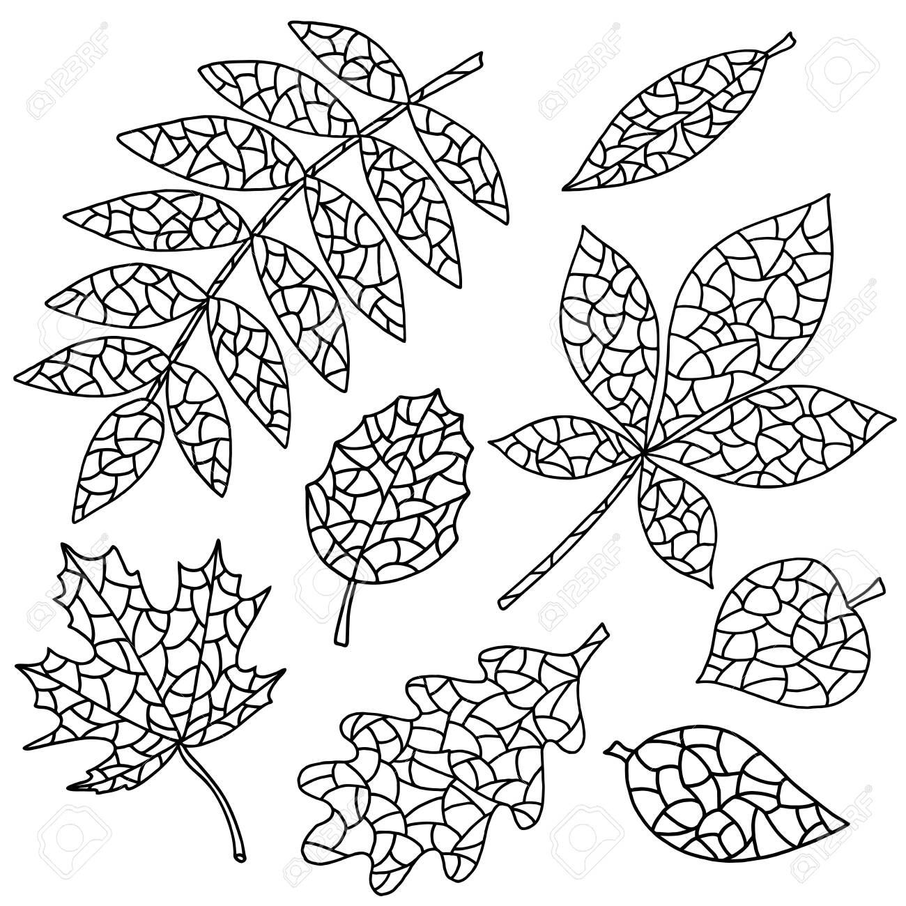 - Set Of Abstract Autumn Leaves, Coloring Pages For Kids And Adults
