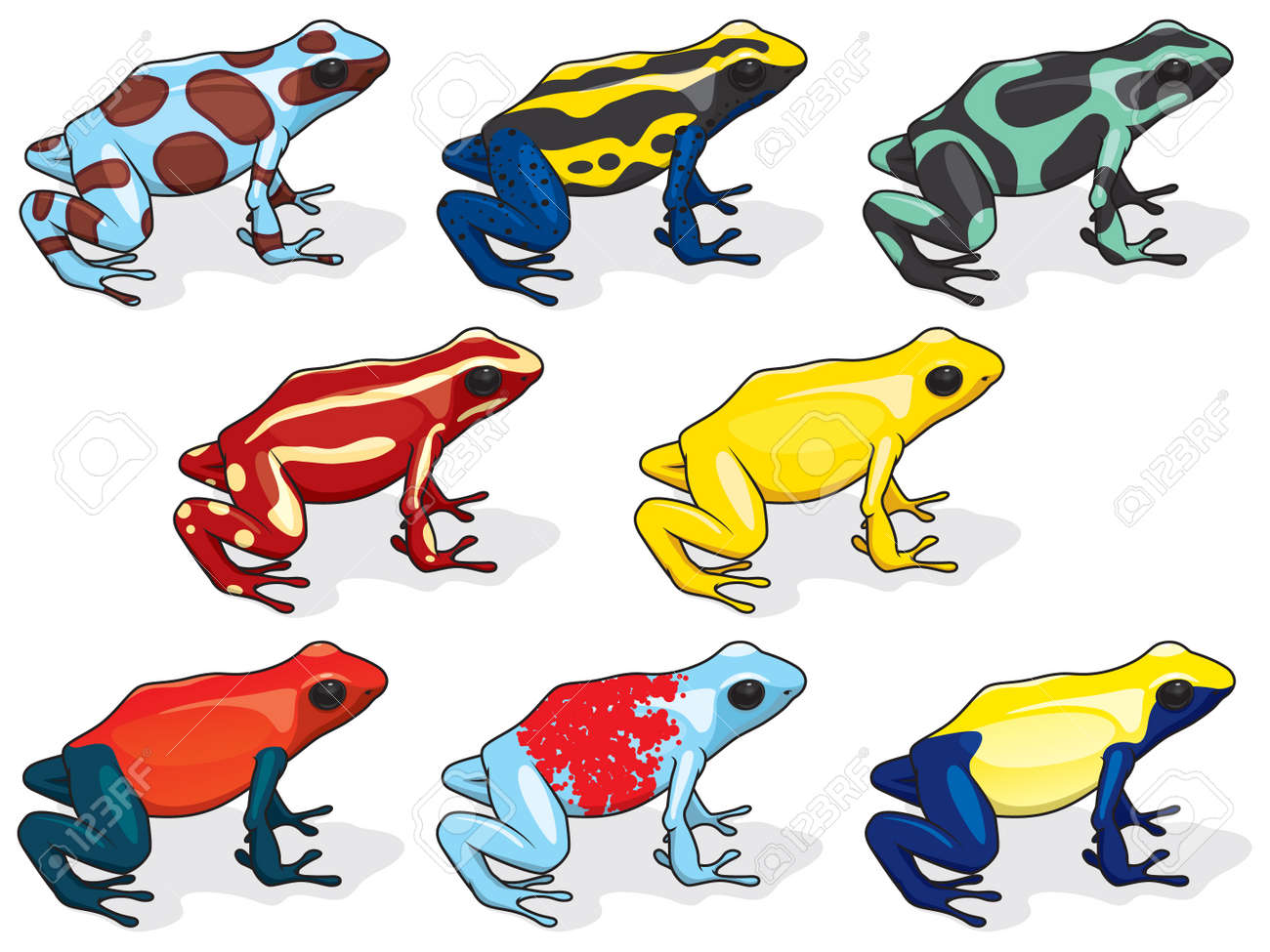 poison dart frogs royalty free cliparts vectors and stock rh 123rf com Red-Eyed Tree Frog Rainbow Poison Dart Frog