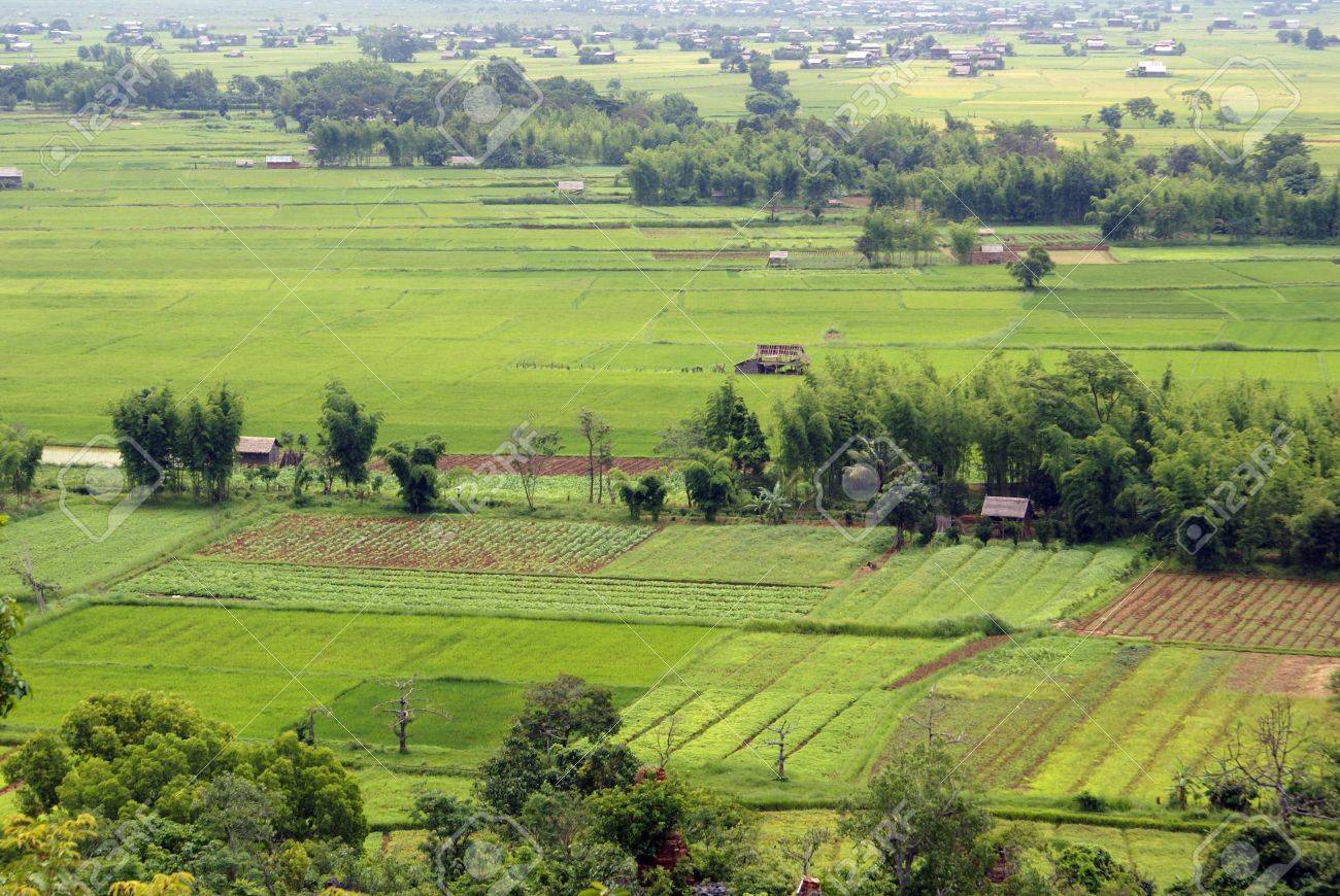 Wide green field with farm houses, Shan State, Myanmar Stock Photo - 3391347