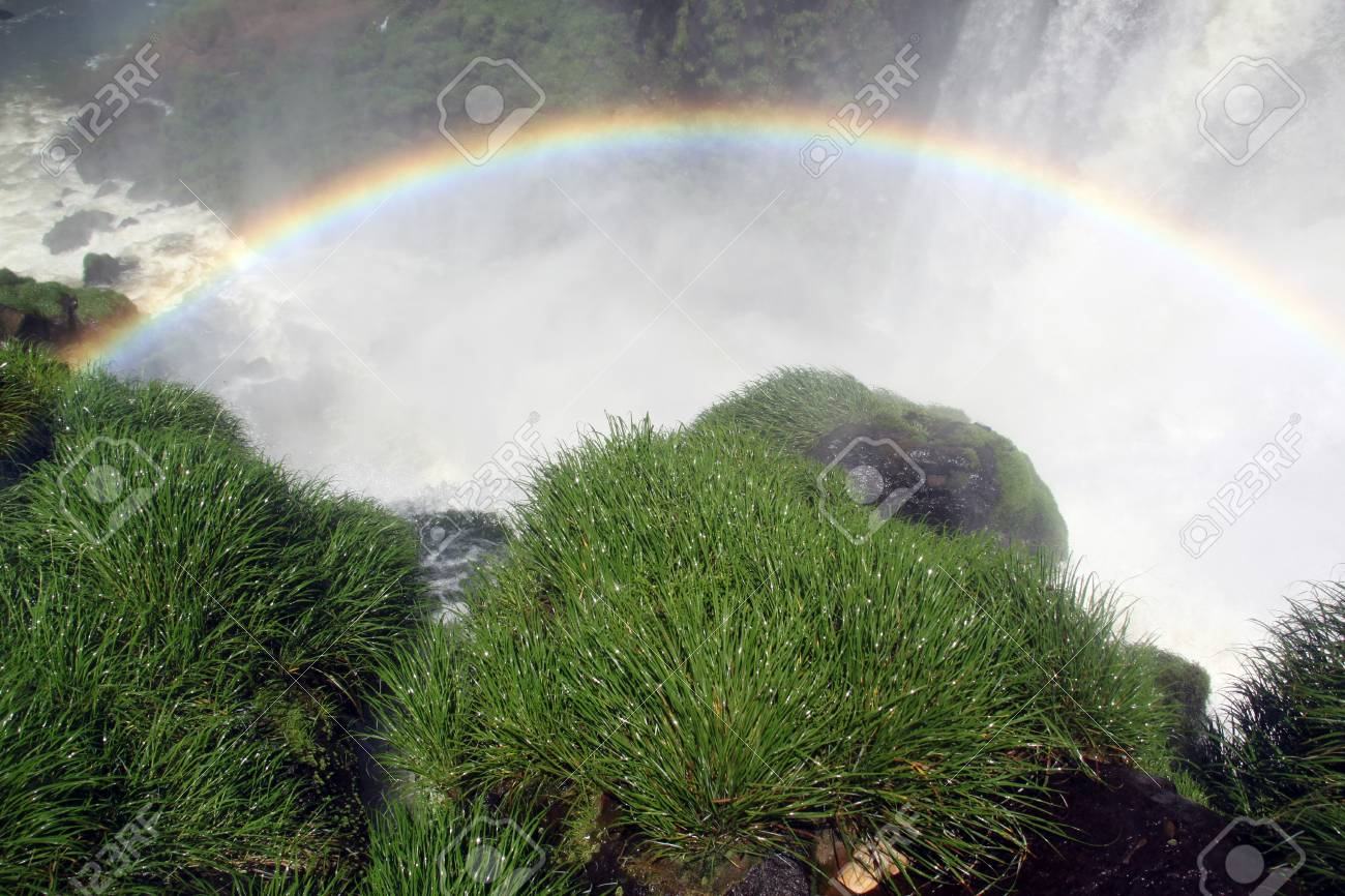 Wet green grass and waterfall Iguazu in Argentina Stock Photo - 7640378