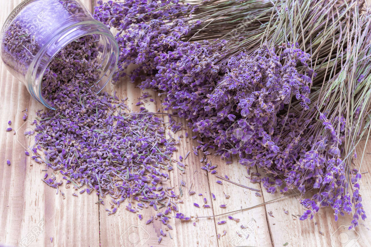 Lavender Dried Flowers In Glass Jar And Scattered And Bunch On
