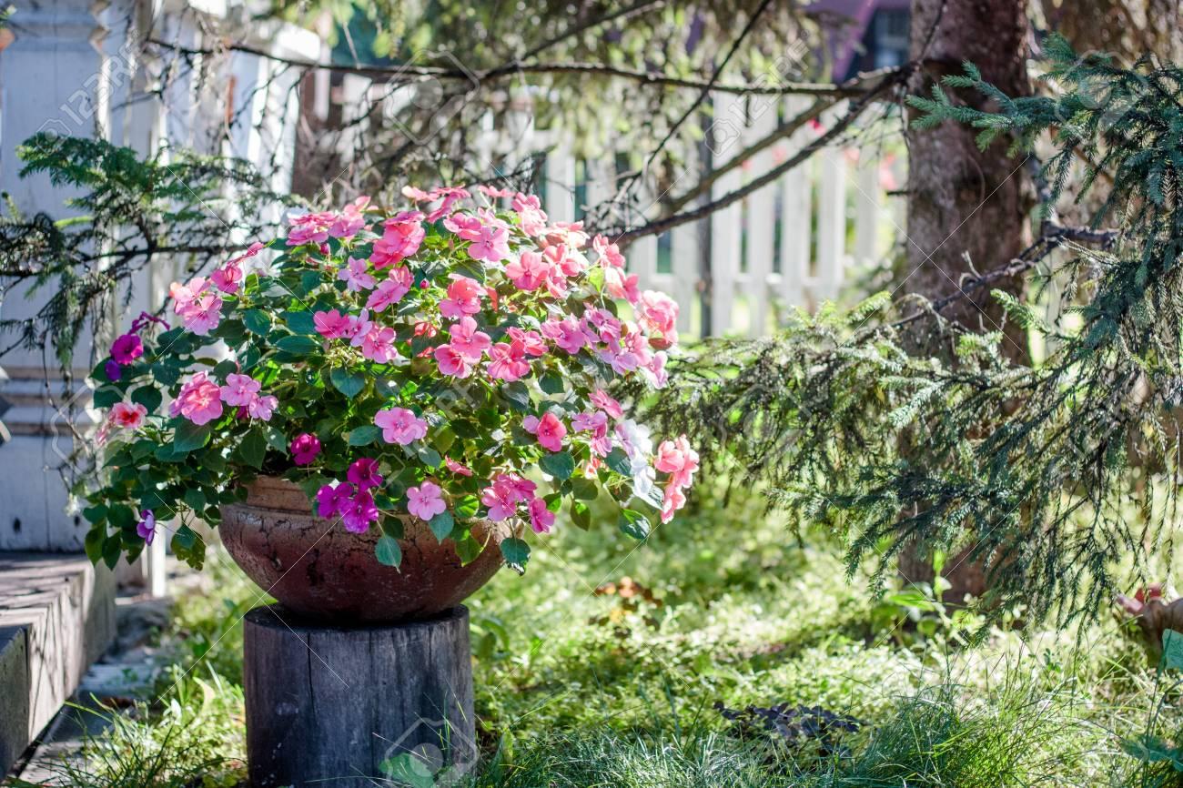 Aménagement D Un Parterre De Fleurs parterre de fleurs sur un jardin de fleurs en tant qu'élément d'aménagement  paysager