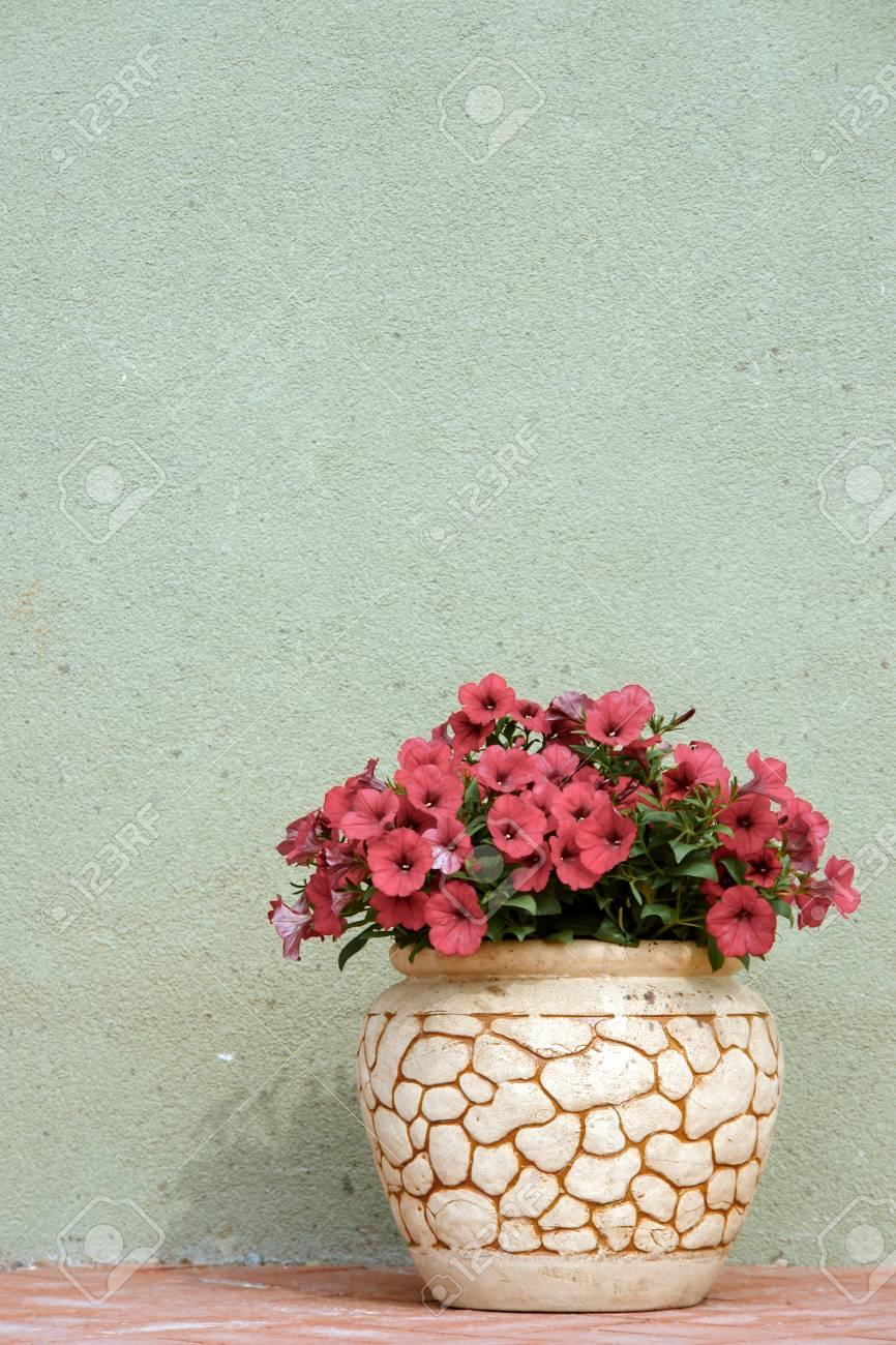 Pink Petunya Flowers In A Ceramic Flower Pot On Street Stock Photo