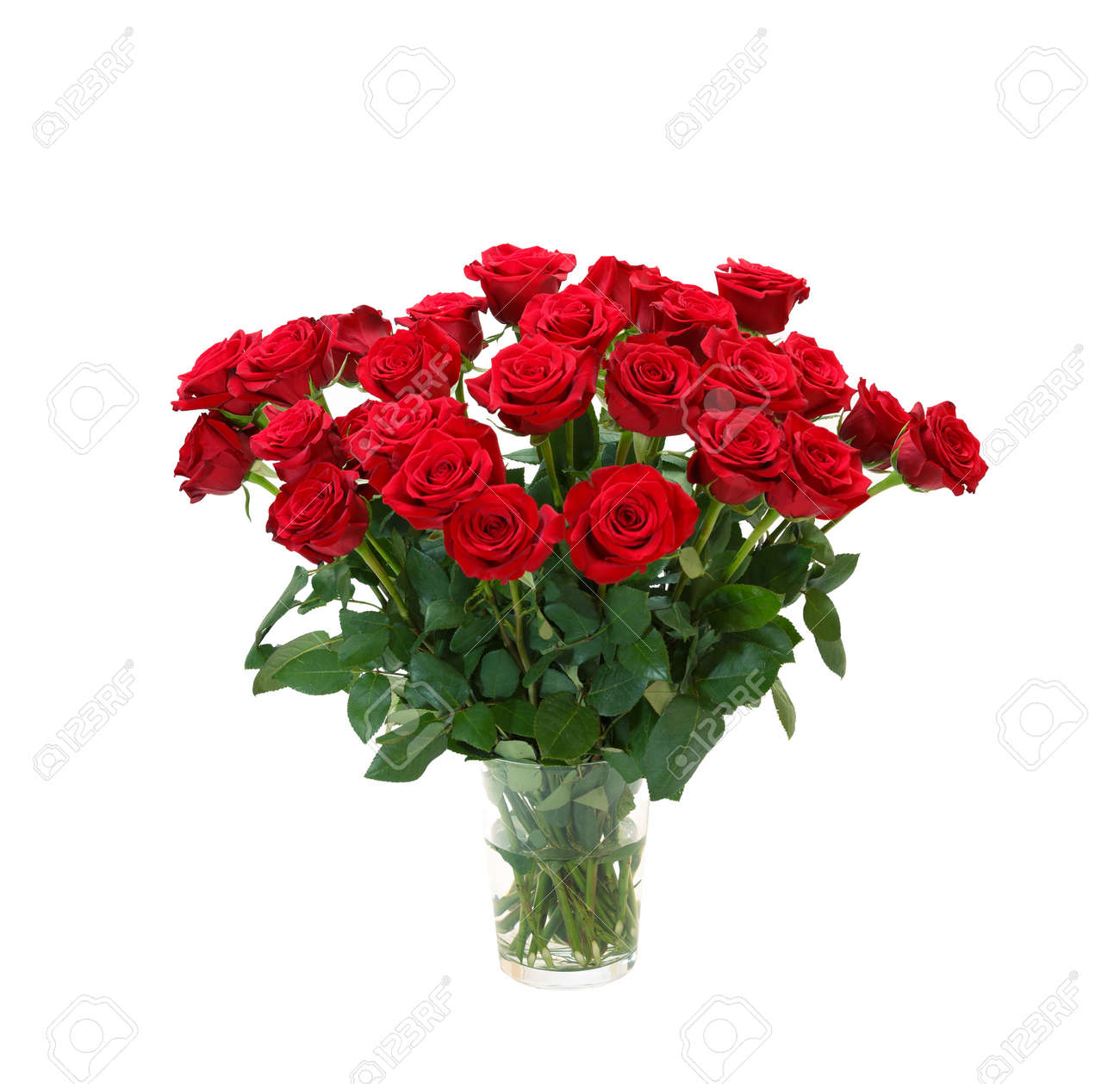 bouquet of blossoming dark red roses in vase isolated on white background - 169821300