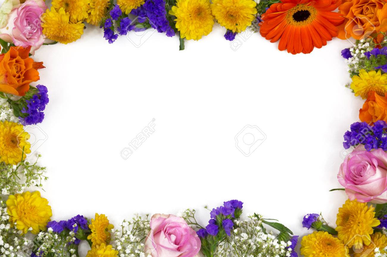 Flower frame of roses statice marigold and chrysanthemum royalty flower frame of roses statice marigold and chrysanthemum stok fotoraf 23345271 mightylinksfo