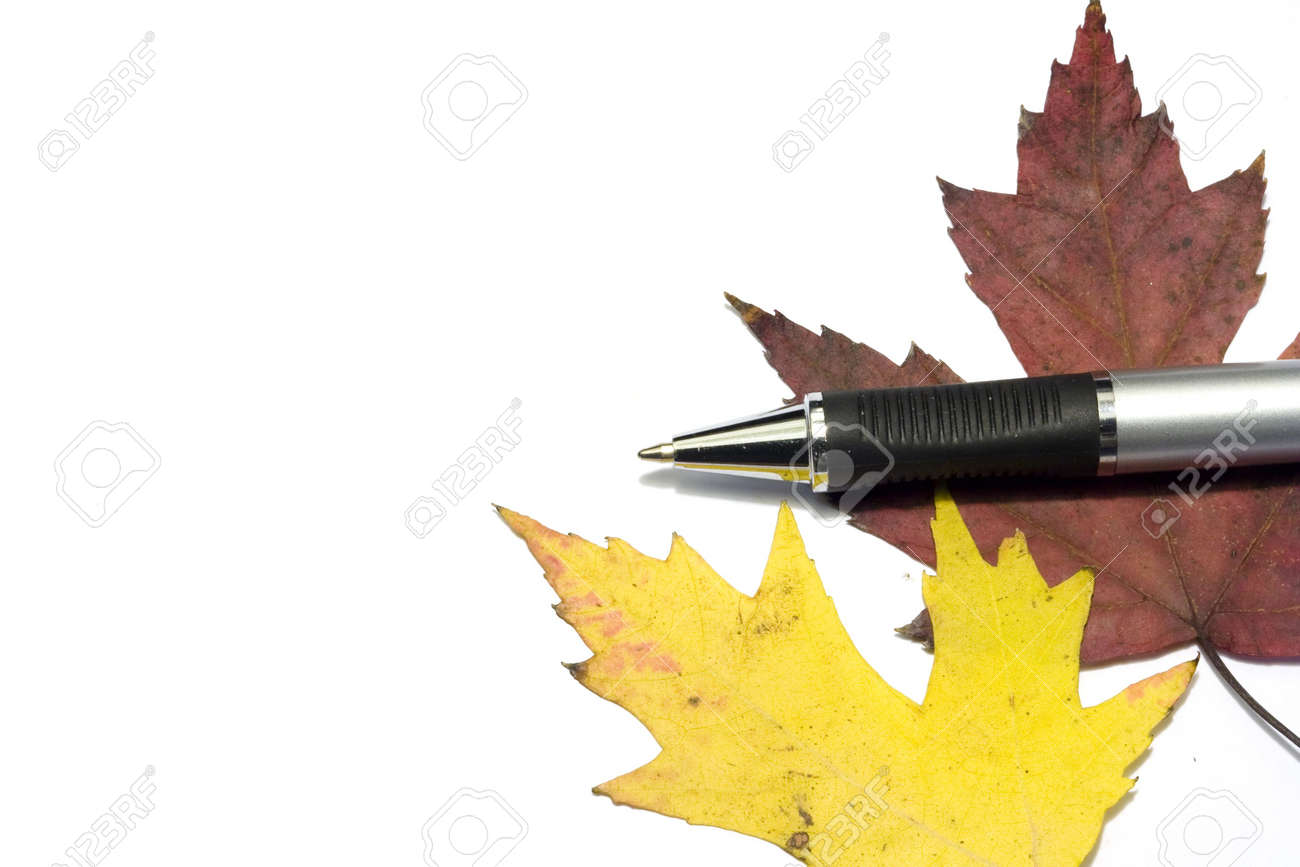 pen with fall golden leafs Stock Photo - 2151010