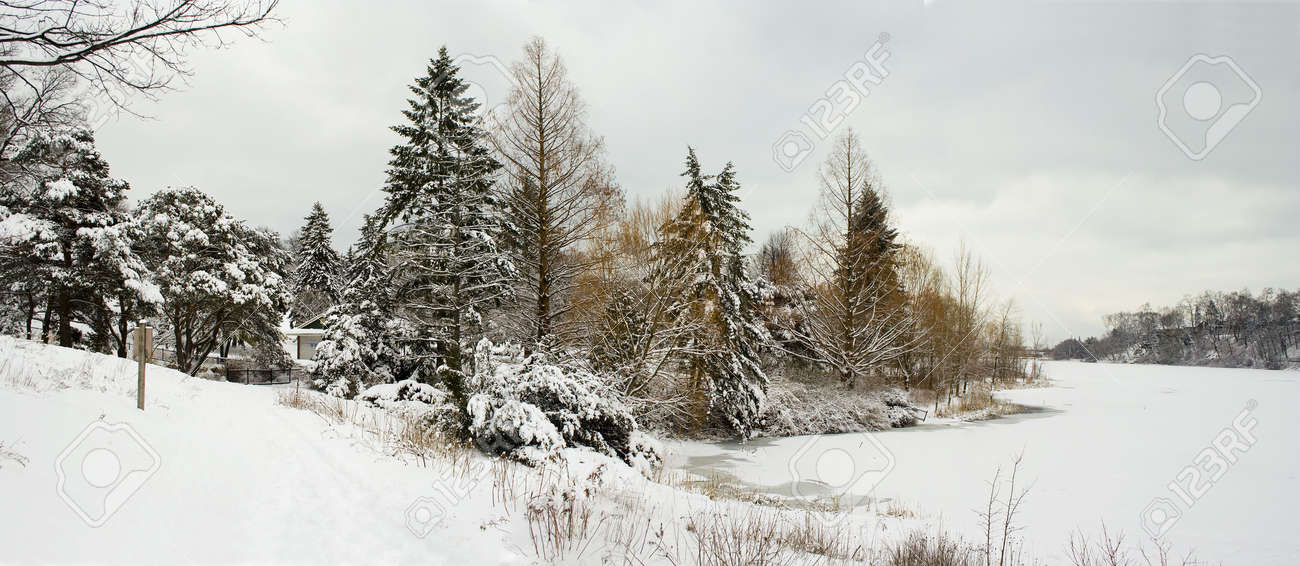 Winter lakeshore view with naked snow-covered trees Stock Photo - 2487483