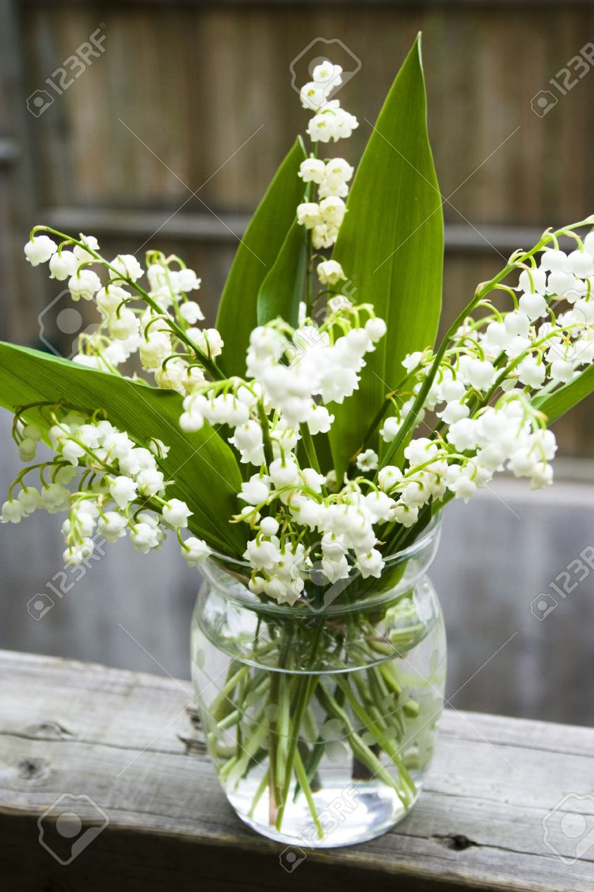 Bouquet Of Lily Of The Valley In Glass Vase At The Wood Handrail Stock Photo Picture And Royalty Free Image Image 4284818