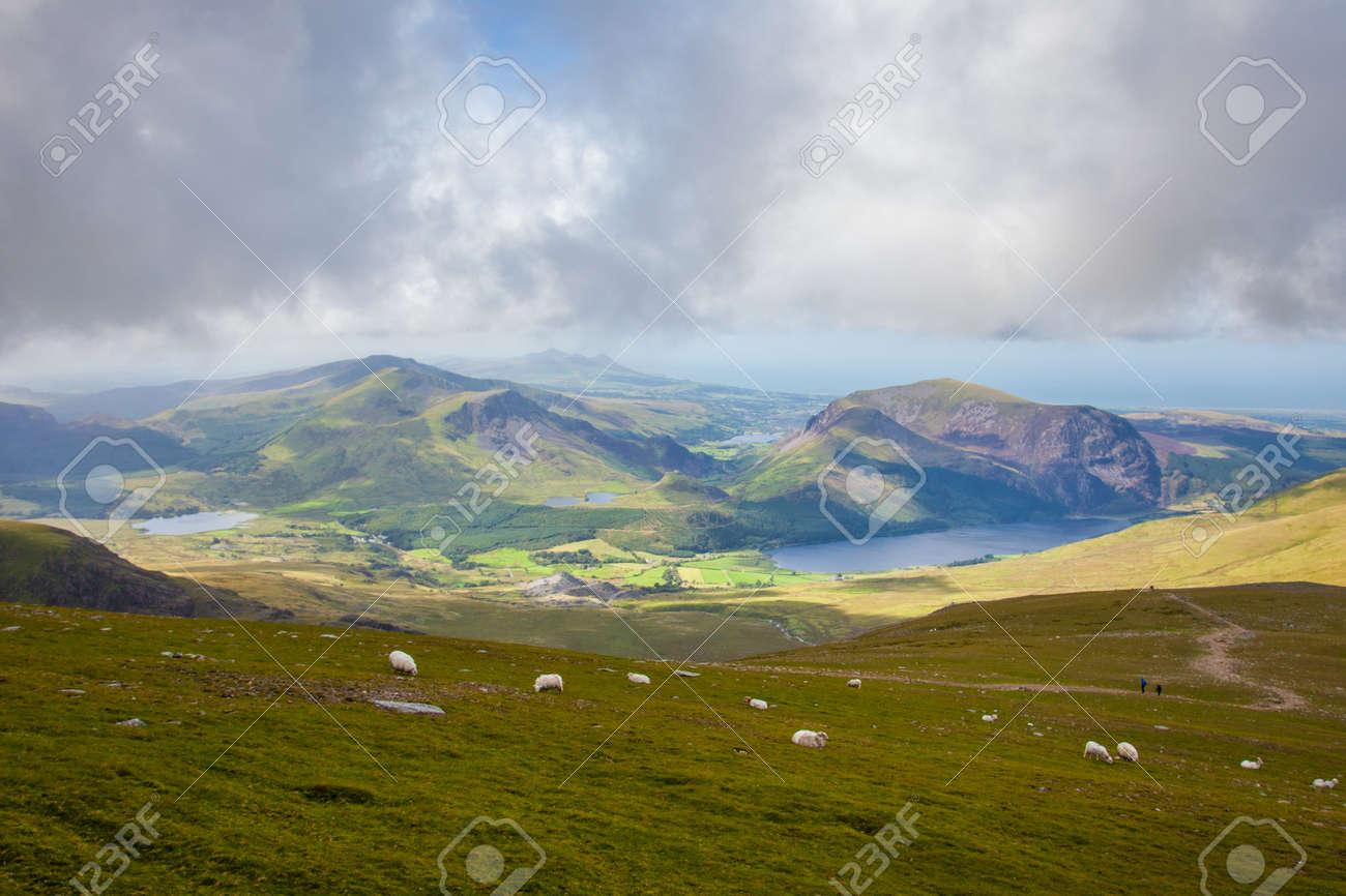 スノードン山 Mt Snowdon から羊...