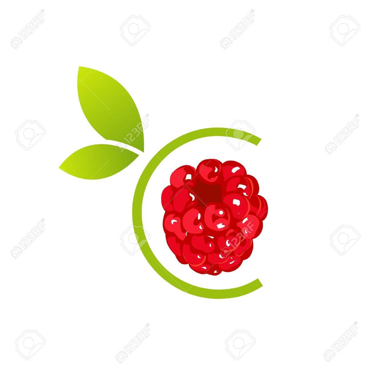 Raspberry - 19864767