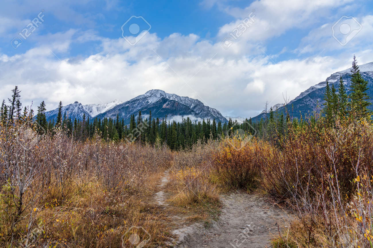 Snow capped Mount Lady MacDonald and Grotto Mountain in autumn. Beautiful natural scenery landscape at Canmore, Canadian Rockies, Alberta, Canada. - 169322019