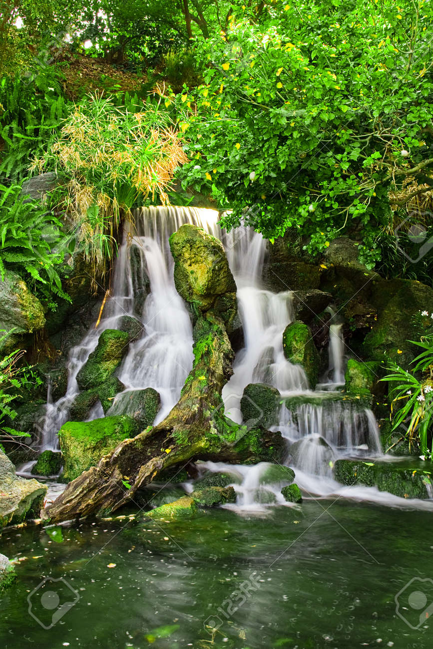 Beautiful waterfall with lake in the forest Stock Photo - 7166502