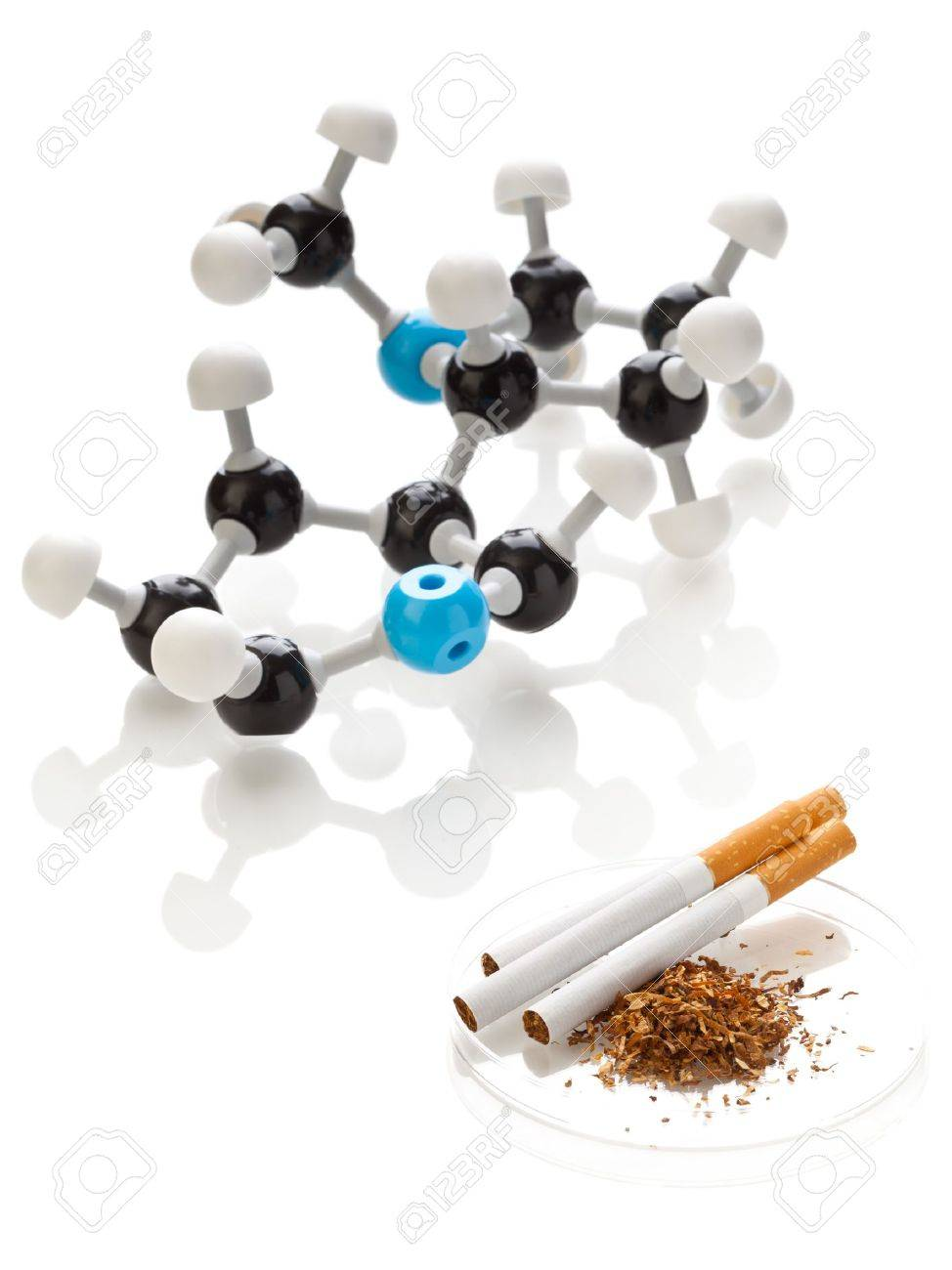 Model of a nicotine molecule with tobacco and cigarettes over white background Stock Photo - 11838057