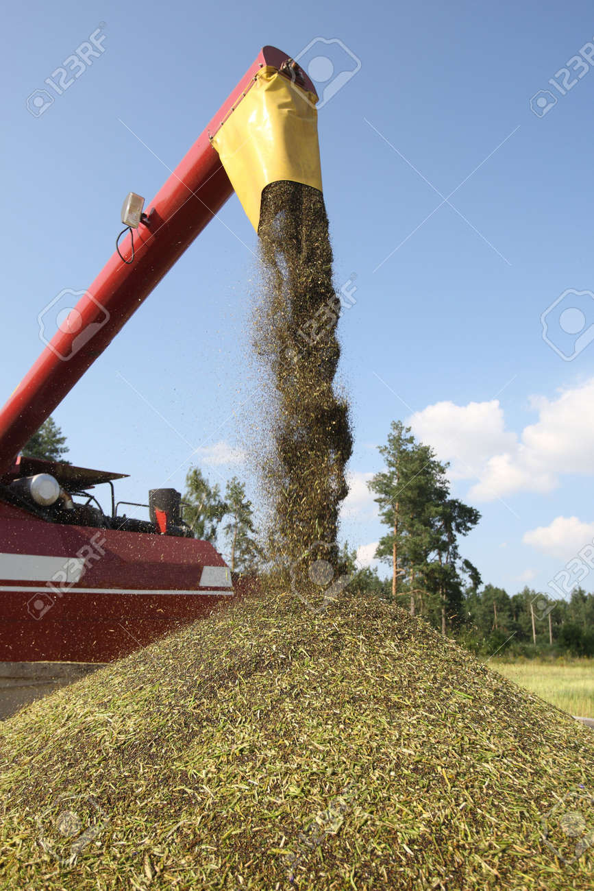 Machine harvesting Rape Stock Photo - 5232346