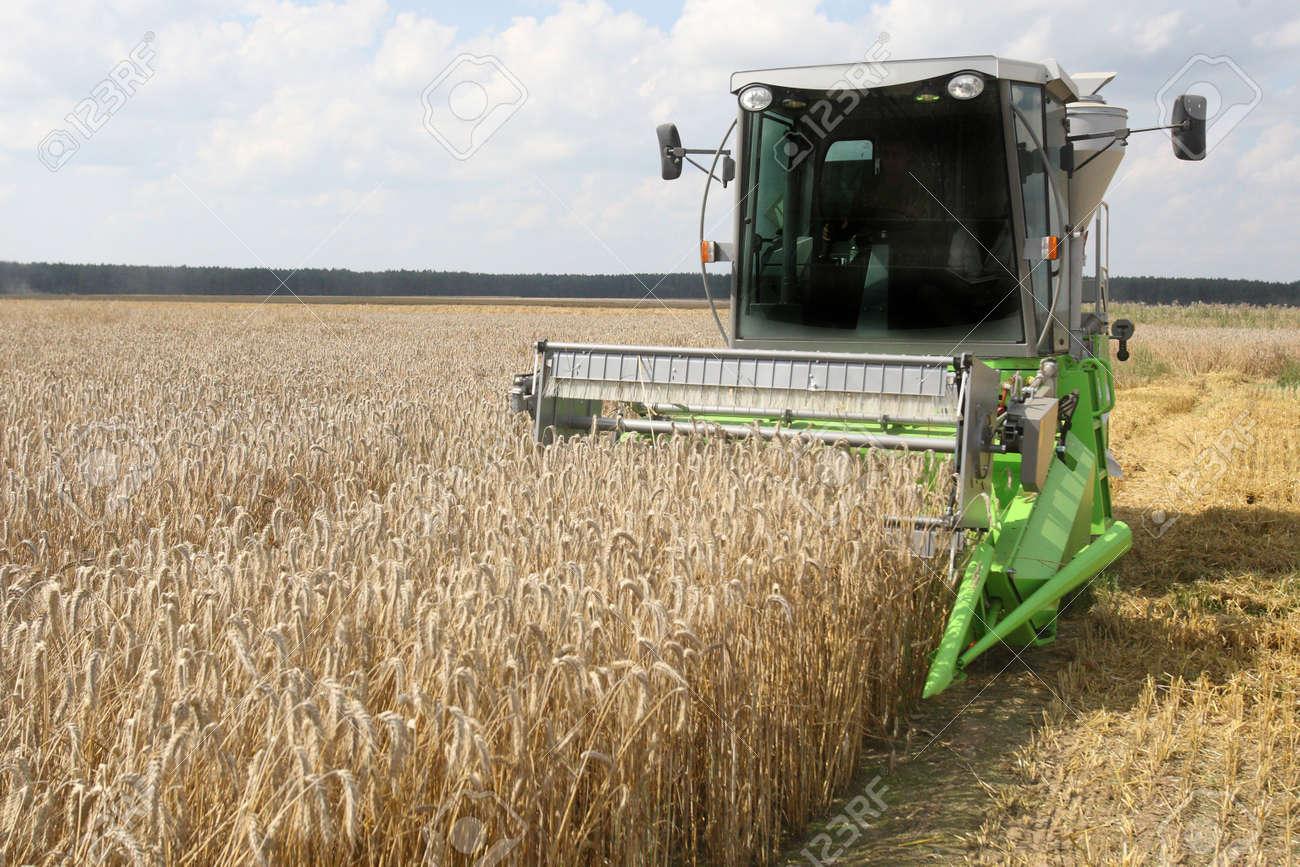 Machine harvesting the corn field Stock Photo - 7519575