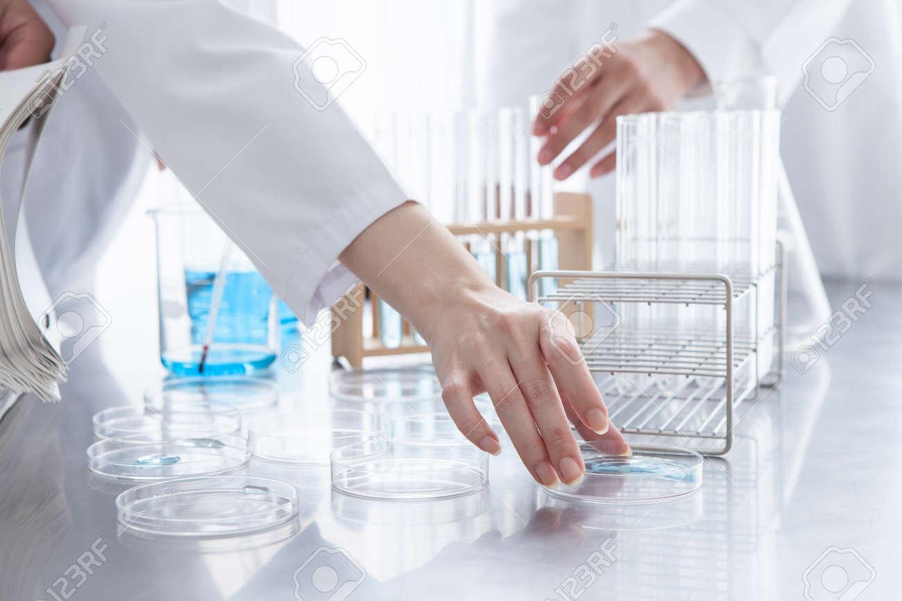 recherche scientifique hommes