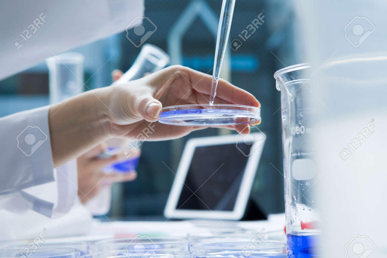 Women researchers have put the liquid in a Petri dish with dropper Stock Photo - 50948777